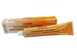Diafarm Dantų pasta su enzimais šunims, 75 g