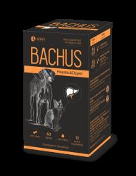 Bachus Hepatic&Digest papildas virškinimo veiklos stabilizavimui 60 skanių tablečių