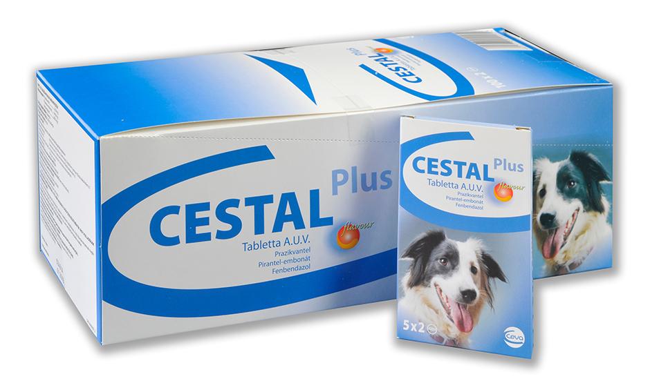 CESTAL PLUS FLAVOUR šunims prieš kirminus 1 tabletė