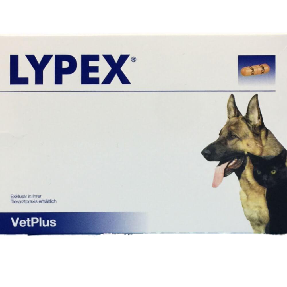 Lypex ( Pankreatinas ) 60 kaps. pakuotė
