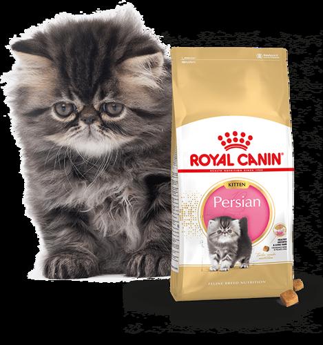 Royal Canin Persian Kitten 2 kg.