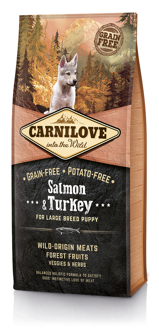 Begrūdis Šunų Maistas Carni Love Salmon & Turkey Large Breed Puppy 1,5kg