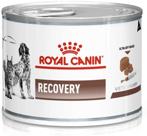 Royal Canin Dog/Cat Recovery 195g