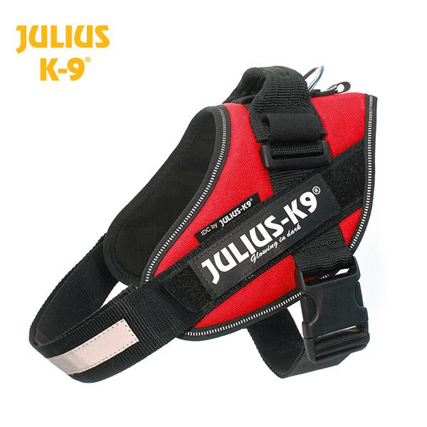 Petnešos Julius K9 IDC raudonos dydis 2