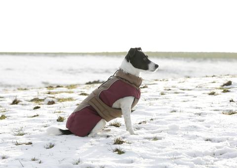 Paltas šunims Royal Pets 35cm- S