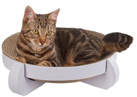 Draskyklė katei Bed Platinum