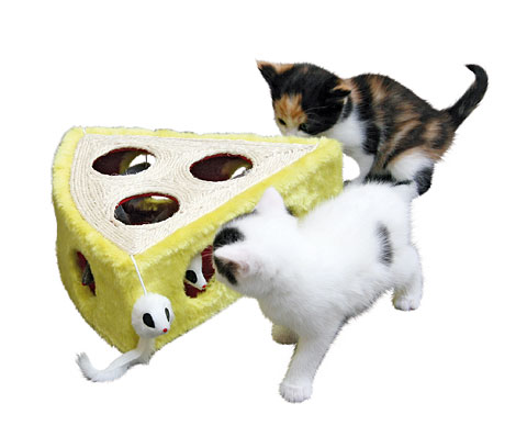 Žaislas katei - spelyjęs sūris 28 x 28 x 10 cm