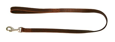 Pavadys Odinis Rondo Rudas 22mm-2,4m
