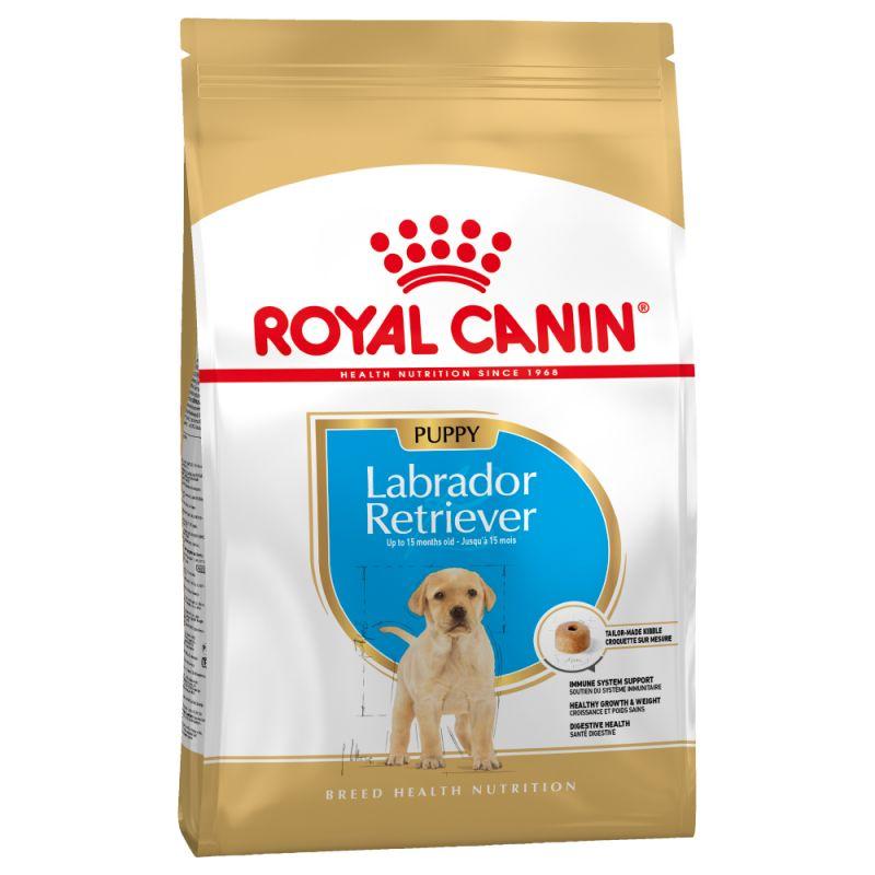 Šunų maistas Royal Canin Labrador Retriever Junior 12kg.