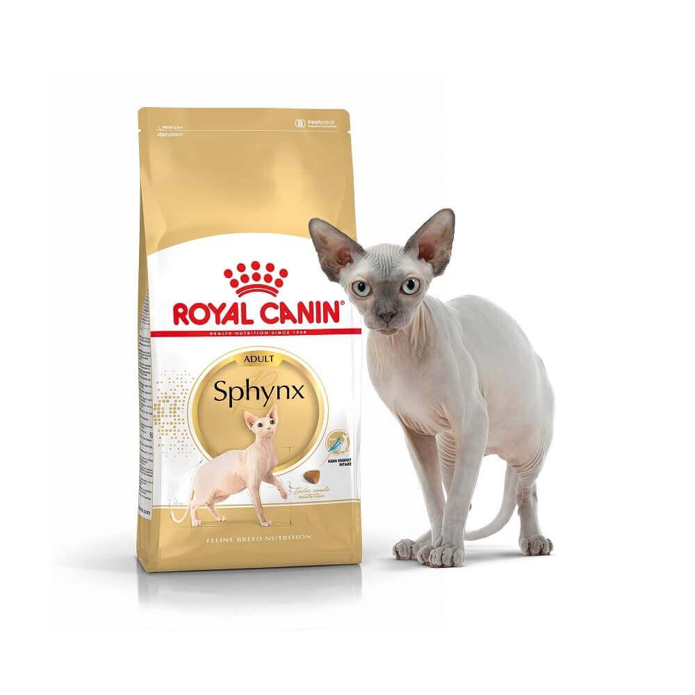 Kačių maistas Royal Canin Sphynx Adult 10kg.
