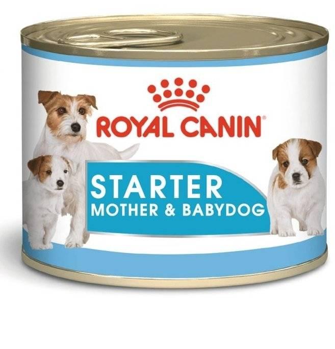 Šunų maistas Royal Canin Starter Mousse konservai 195gr.