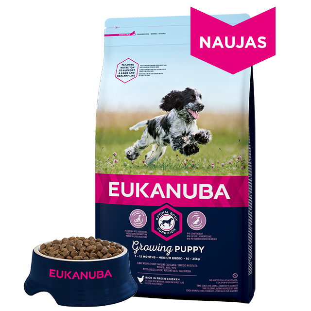 Eukanuba Puppy & Junior Medium Breed Chicken 15kg.