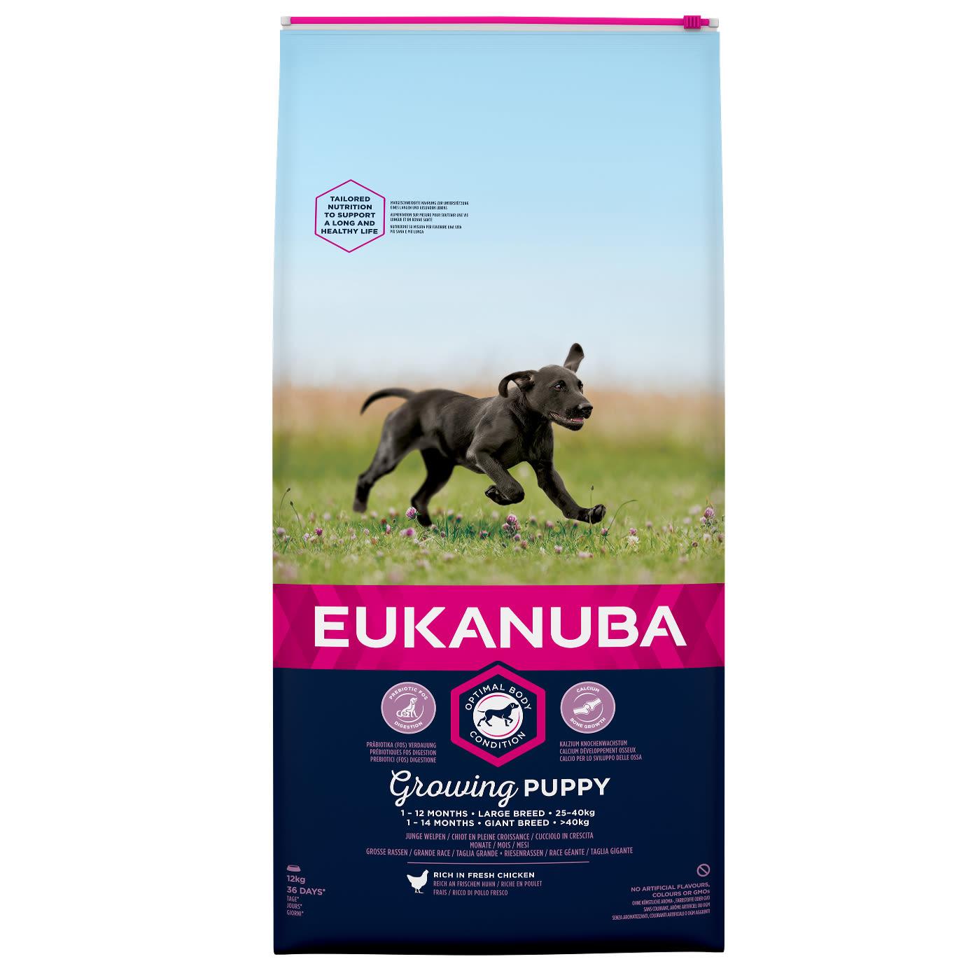 Eukanuba Puppy & Junior Large Breed chicken 15kg.